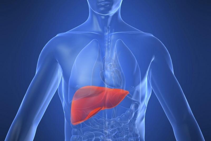 malattie del fegato quali sono come si manifestano?